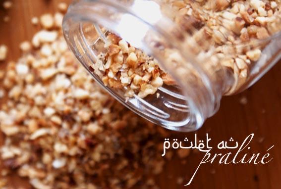 poiretcactus-recette-plats-poulet-sucré-mielBIS